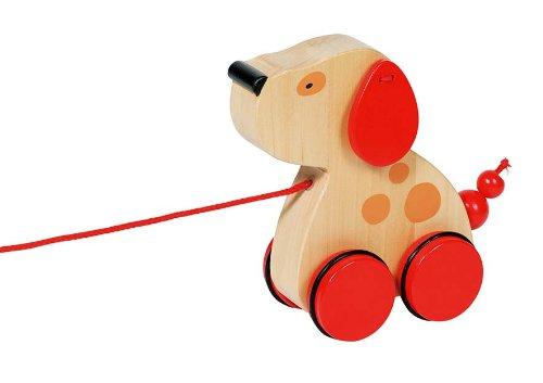 chien Luhna à trainer