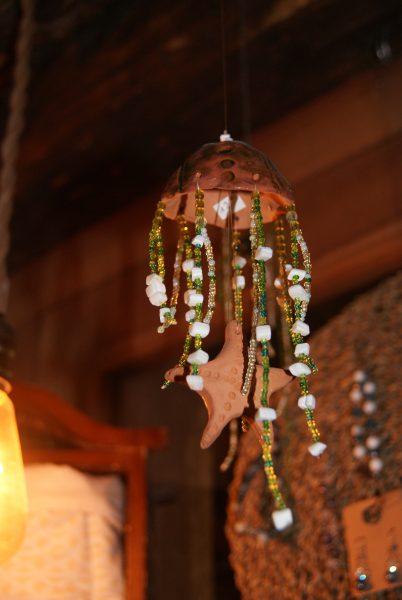 méduse étoile